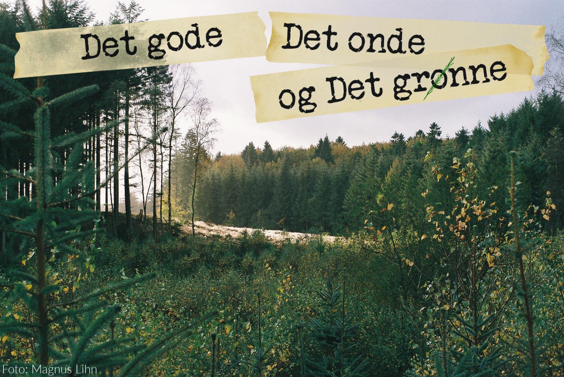 Det gode, det onde, det grønne billede 1